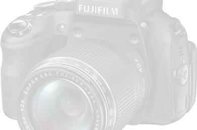 Fælles swimmingpool